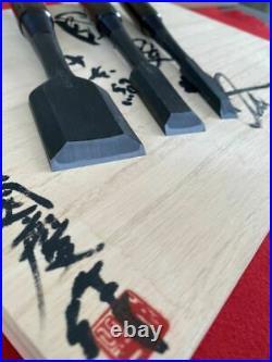 10 Chisels Carpenter Tool Kokkei Japanese Third generation Ebony Oire Nomi Pro