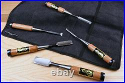 Fujikawa Professional Oire Nomi Japanese Chisel Set of 5