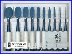 Japanese Carpenter Tool Oire Nomi 10 Wood Chisels Set Zensho Aokami Yasuki Steel