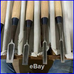 Japanese Carpenter Tool Oire Nomi 11 Chisels Set Tsuki Ichihiro Professional TRK