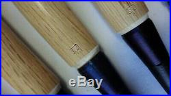 KANETAKE Japanese Bench Chisels/Oire Nomi Set of 9