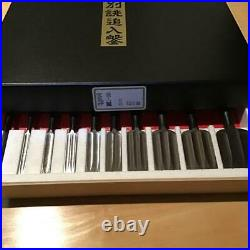 Set of 10 Japanese Bench Chisels/Oire Nomi TAKARARYUJIN